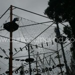 jubilee puncak camp high rope
