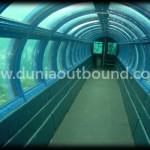 Lokasi Outbound Pulau Seribu Aquarium Bawah Laut di Pulau Putri