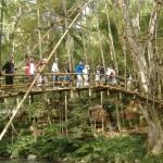 jembatan bambu suku Baduiy