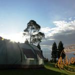 Sallaca Highland Camp, Lokasi Outbound Keren Dengan Konsep Menyatu Dengan Alam