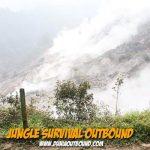 Puninar Logistics Jungle Survival Outbound Training
