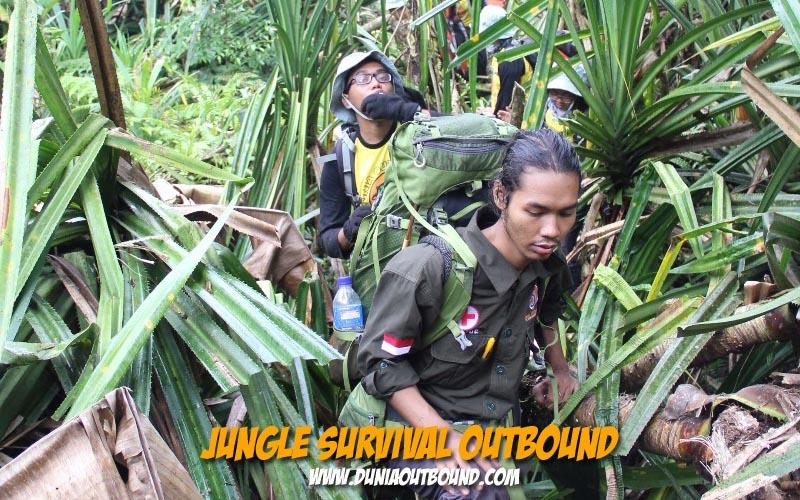 jungle survival training